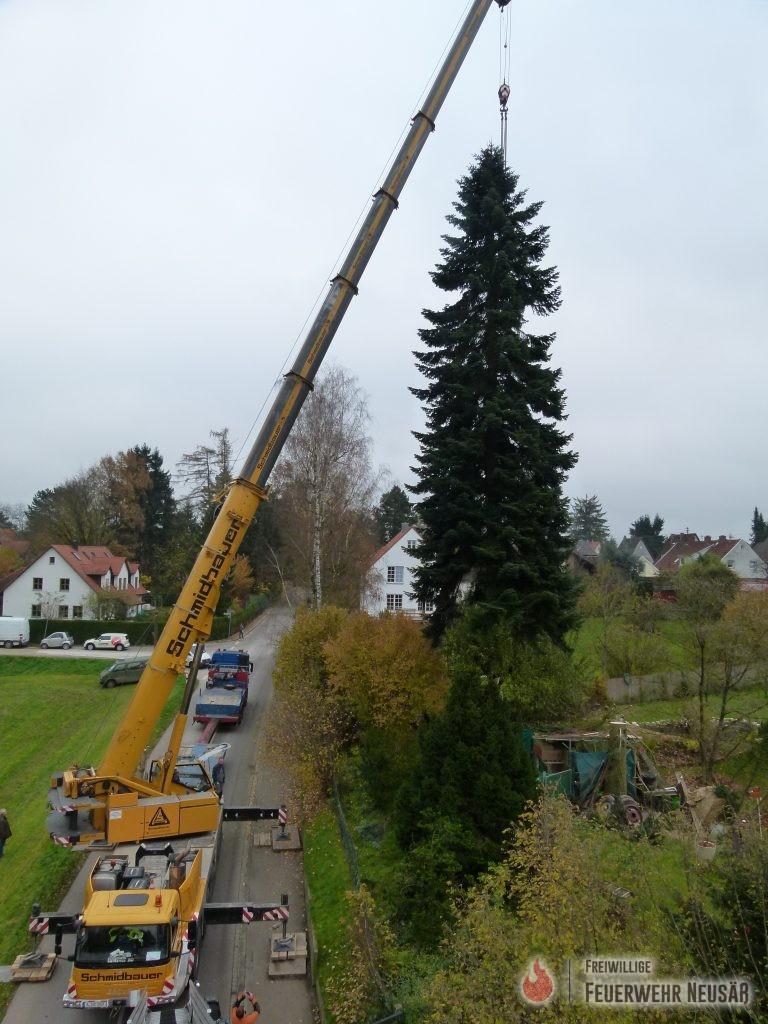best 28 weihnachtsbaum augsburg best 28